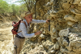 Aaron takes some samples from the fossil reef.