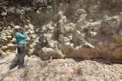 Erin w fossils copy 1