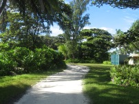 Path from the lab to camp